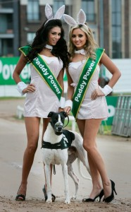 paddy power 1